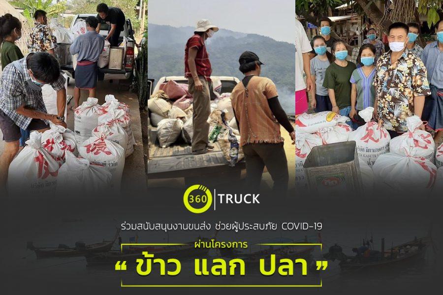 CSR_rice change fish